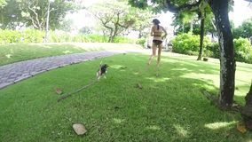 Happy young girl running with her beagle dog in summer park. Slow motion. Outdoors portrait. Slow motion. Tropical stock video