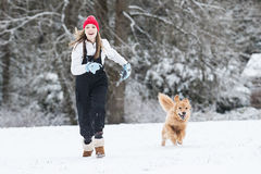 Happy young girl running in the snow with her golden retriever d Royalty Free Stock Images