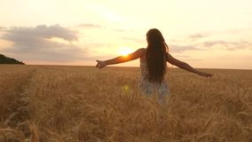 Happy young girl runs in slow motion across field, touching ears of wheat with her hand. Beautiful free woman enjoying