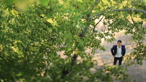 Happy young groom standing near the green tree in the forest. Top view stock video
