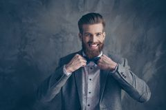 Happy young happy bearded man with mustache in formalewear stand. S on a gray background and holds his bow-tie with both hands royalty free stock images