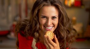 Young housewife eating christmas cookie in kitchen Stock Images