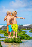 Happy young kids playing at the beach on summer vacation Stock Image