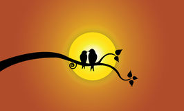 Happy Young love birds on tree branch during sunse. T & orange sky. Two youthful bird silhouettes sitting on a leafy tree branch against beautiful bright yellow Vector Illustration
