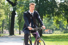 Businessman Riding Bicycle In Park royalty free stock image