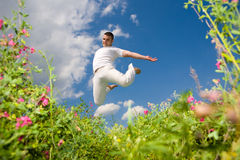 Happy young man - jumping Royalty Free Stock Image