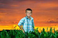 Happy young man rest on green field Royalty Free Stock Image