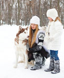 Happy young mother with daughter with huskies dog Royalty Free Stock Photography