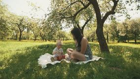 Happy young mother playing on blanket with her son under tree at park. Concept of happy family love in slow motion stock video footage