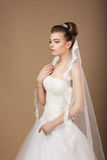 Happy Young Newlywed with Veil Stock Photography