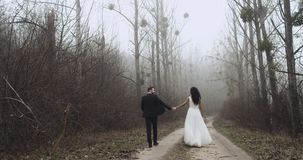 Happy young newlyweds are walking in a forest and they kiss,slow motion. 4k stock video