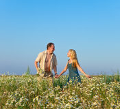 The happy young pair in the field of chamomiles Stock Photos