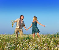 The happy young pair in the field of chamomiles Stock Images