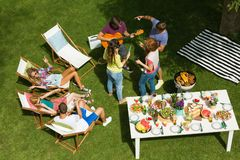 Countryside barbecue party with guitar royalty free stock image