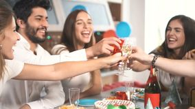 Drinking a Toast at Party. Happy young people drinking toast during birthday celebration, having great time in relaxing sweet home atmosphere stock video