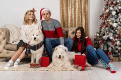 Happy young people in santa hats and two wite dogs in santa hats also royalty free stock image