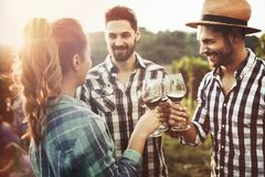 People tasting wine in vineyard. Happy young people tasting wine in vineyard royalty free stock images