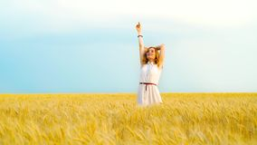 Happy woman in golden wheat field with blue sky on background with copy space. Happy young red haired woman in golden wheat field with blue sky on background stock footage