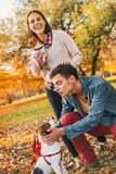 Happy couple walking in autumn park and playing with dogs Stock Image