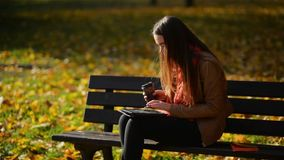 Happy Young Student Girl with a Tablet and a Disposable Coffee Cup Sitting on the Bench and Using Laptop in a Autumn. Park. Relax stock video footage