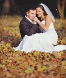 Happy young wedding couple in autumn forest. Royalty Free Stock Images