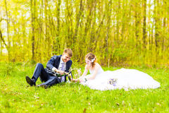 Happy young wedding couple on picnic  in a spring park Royalty Free Stock Images