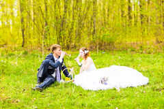 Happy young wedding couple on picnic  in a spring park Royalty Free Stock Image
