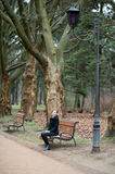 Happy young woman in a black coat sitting on a wooden bench. On the background of autumn park Stock Images