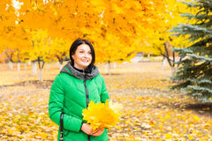 Happy young woman collecting yellow fall leaves Stock Photos
