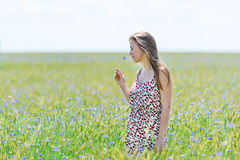 Happy young woman in corn field with cornflowers Royalty Free Stock Photos