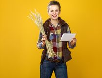 Happy young woman farmer with wheat spikelets using tablet PC Stock Photo