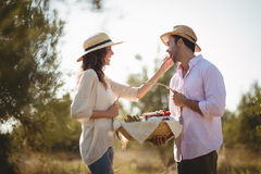 Happy young woman feeding boyfriend at farm Royalty Free Stock Photography