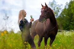 Happy young woman feeding her arabian horse with snacks in the field Royalty Free Stock Photography