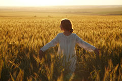 Happy young woman among field at sunset Royalty Free Stock Image