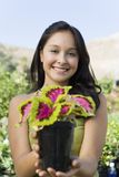 Happy Young Woman Holding Potted Plant Royalty Free Stock Image