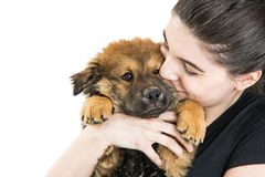 Free Happy Young Woman Holding Puppy On White Royalty Free Stock Photography - 113402527