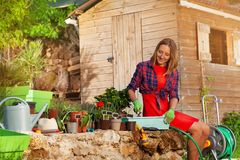 Happy young woman potting plants in the backyard royalty free stock image