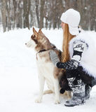 Happy young woman with huskies dog Stock Photography