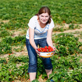 Happy young woman on pick a berry farm picking strawberries Stock Images