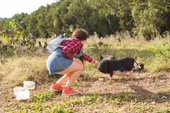 Happy young woman plays with little wild boars on nature. stock photo