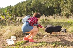 Happy young woman plays with little wild boars on nature. royalty free stock photos