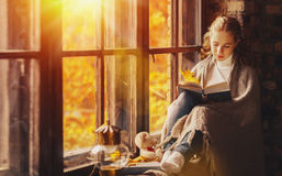 Happy young woman reading book by window in fall stock photos