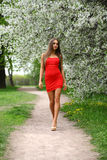 Happy young woman in red dress against the background spring flo Royalty Free Stock Image