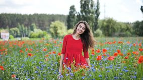 Happy young woman in red dress and big hat Enjoying Nature. Beauty Girl Outdoor walks on a poppy field. Freedom concept. Beauty Girl over Sky and Sun stock video footage