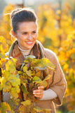 Happy young woman standing in autumn vineyard Stock Image