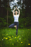 Happy young woman standing in yoga pose vrikshasana on the grass Stock Photography