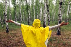Happy young woman in yellow raincoat walking in spring forest under rain and having fun raising arms stock photo