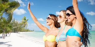 Happy young women in bikinis on summer beach Stock Images