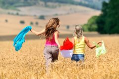 Happy young women on field in summer Stock Photos
