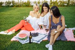 Happy young women friends having a picnic in the country. Royalty Free Stock Image